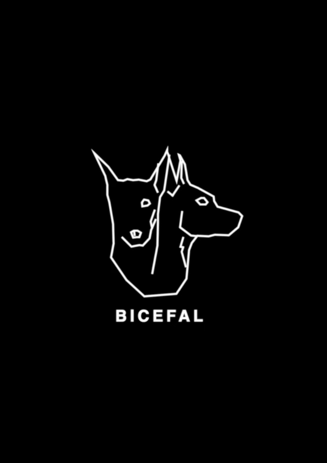 Bicefal Project